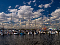 Mornington Harbor