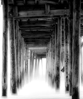 Under the Dock 17